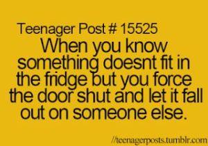 fridge door